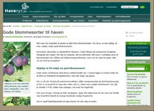 Gode blommesorter til haven-2